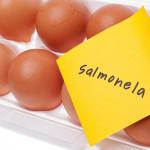 Najava predavanja: Salmonela u hrani